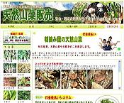 天然とりたて山菜販売の朝摘み屋 山形県